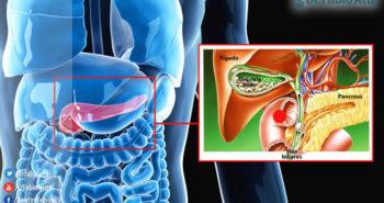 Retirada da vesícula biliar - Por Dr Fabio Atui - Cirurgia do Aparelho Digestivo e Coloproctologista