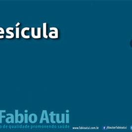 Vesícula - Por Dr Fabio Atui - Cirurgia do Aparelho Digestivo e Coloproctologista